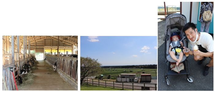 デジタコ&物流情報システム開発のフルバック@ふれあい牧場